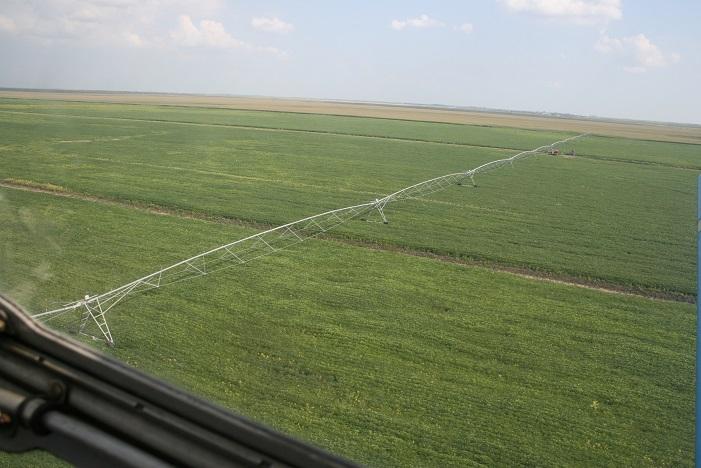 Pilot area